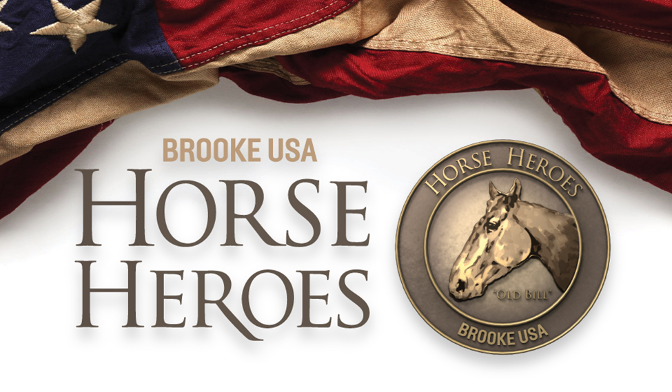 Horse heroes banner
